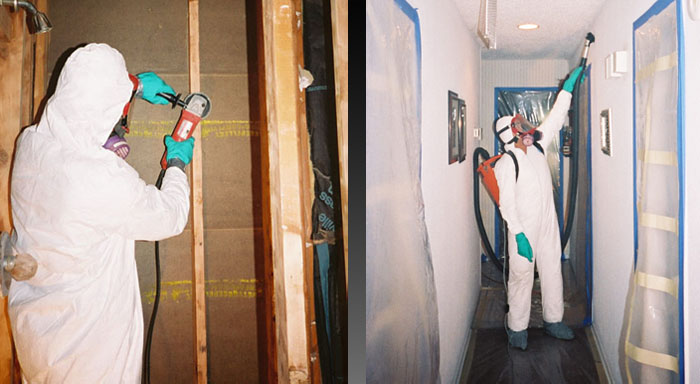 mold remediation Fort Sheridan