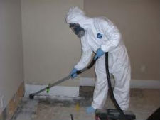 mold remediation lake in the hills
